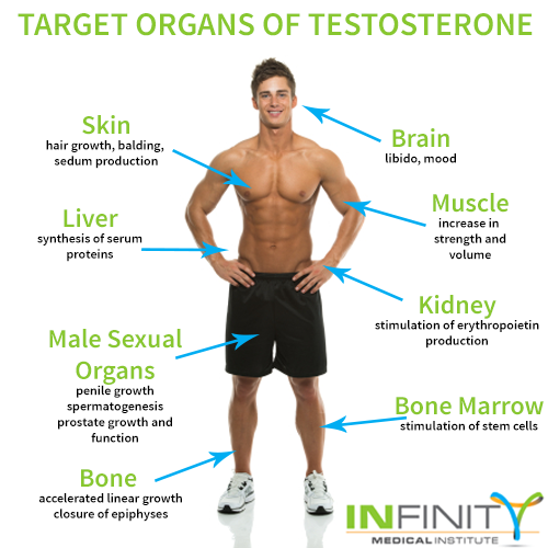 Naturally raise testosterone for better sex